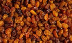 Global Raisins -New Crop 2018 - Pangea Brokers